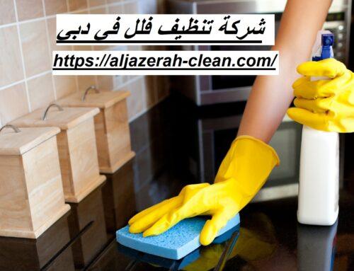 شركة تنظيف فلل في دبي |0588405766| تنظيف وتطهير