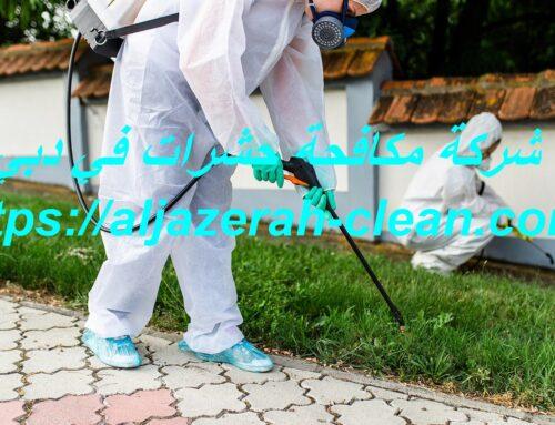 شركة مكافحة حشرات في دبي |0588405766| رش مبيدات